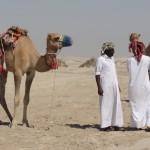 dans les dunes à doha