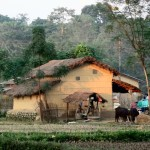 une maison tharu